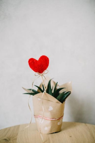 Propozycje walentynkowych prezentów od Remington Uroda, LIFESTYLE - Święto zakochanych zbliża się wielkimi krokami. 14 lutego, to specjalna data, podczas której szczególnie podkreślamy nasze uczucia do partnera. Poniżej zamieszczamy kilka propozycji, jakie podarować drugiej połówce. Zarówno dla niej, dla niego, jak i dla siebie samego.